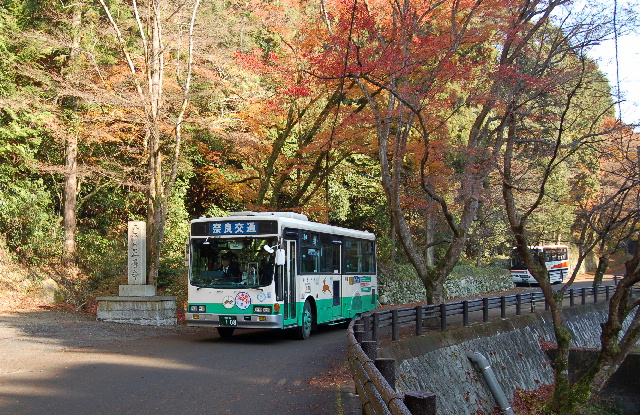 正暦寺臨時バス~奈良交通: 日本...